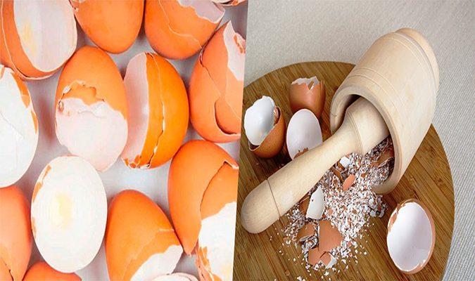 ¡No tires las cáscaras de huevo nunca más!