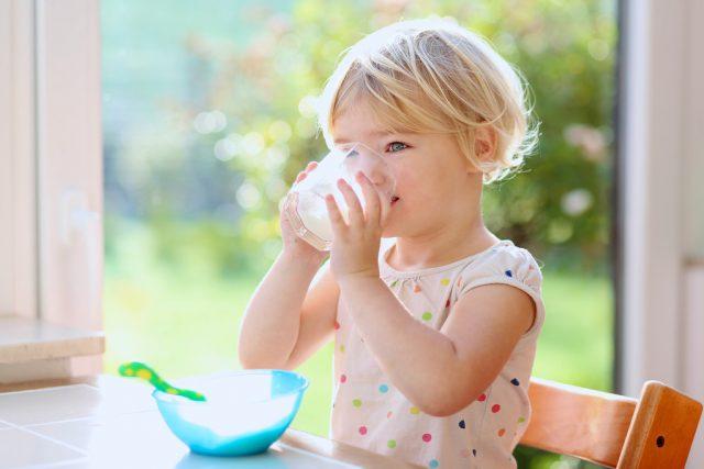 Según el último estudio, la ingesta de leche entera se vincula a menor obesidad infantil