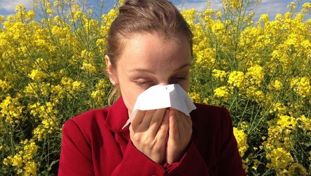 Estos son los motivos por los que no debemos reprimir los estornudos